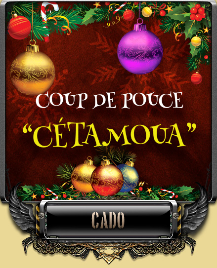 Noël 2014 - sapin et cétamoua CDP-cetamoua-01